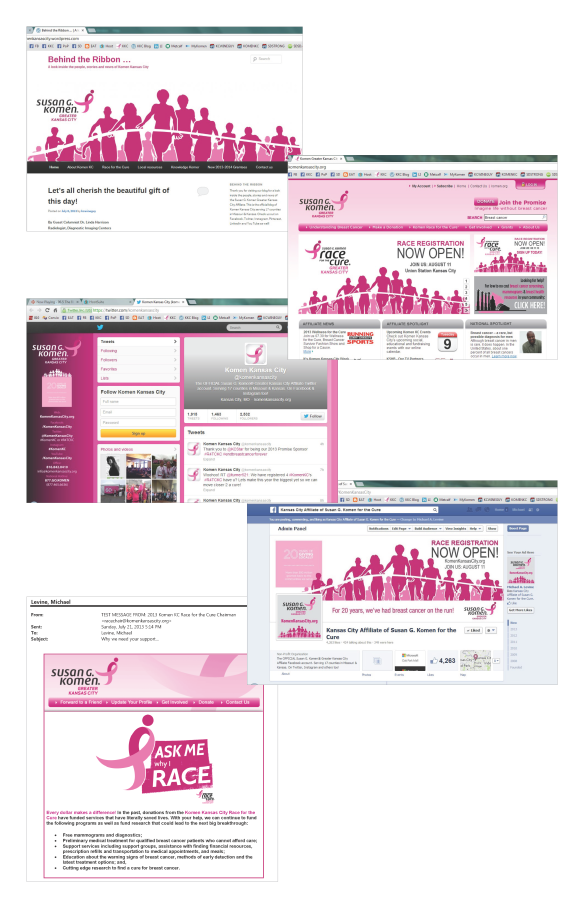 2013 Komen20 Graphic Campaign Usage_Page_5