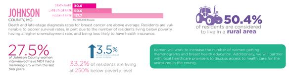 2015 Komen KC Community Profile Infographic - JOHNSON